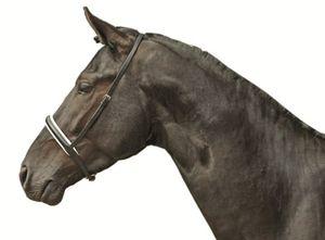 Reithalfter für Kandare, weiß unterlegt, Farbe:9112 schwarz/weiß, Größe:Pony