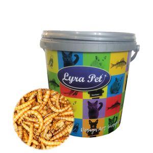 5 Liter Lyra Pet® Mehlwürmer getrocknet im Design Eimer