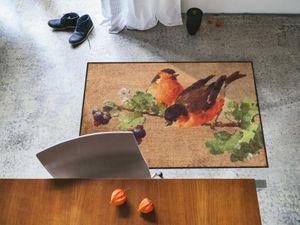 Salonloewe Fußmatte Nosy Robin waschbare Vogelfußmatte, Größe:50 x 75 cm