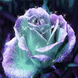 5D Diamond Painting Strass Bild Handarbeit Basteln Rose Steine DIY Diamant Malerei Handwerk Klebebild Kreuzstich Wanddekoration 30x30 cm