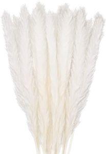 30 Stück Pampasgras Getrocknet Deko, Trockenblumen Bodenvase Getrocknete Blumen 58cm, Weiß Kunstblumen Boho Deko Schlafzimmer Wohnzimmer Balkon Badezimmer Zimmer Tischdeko Hochzeit, MEHRWEG