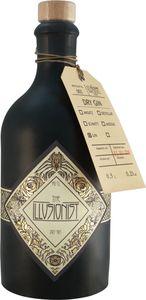 The Illusionist Dry Gin - Farbwechsel Gin 0,5l 45% vol.