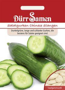 Dürr Samen - Salatgurken Chinese Slangen