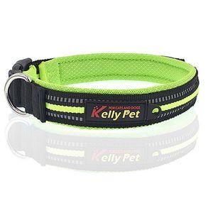 Hundehalsband reflektierend Nylon Mesh atmungsaktives Band Klickverschluss Größe S (Breite 2cm, Länge 35-40cm) Grün