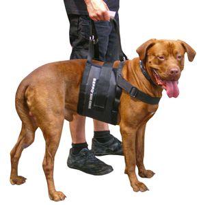 """Beppo® Hunde-Gehhilfe """"One-Size"""" Hunde Tragehilfe für mittelgroße bis große Hunde"""