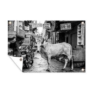 Gartenposter - Kuh - Haus - Schwarz und Weiß - 60x40 cm