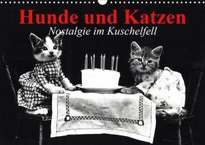 Calvendo Wandkalender Hunde und Katzen - Nostalgie im Kuschelfell (Wandkalender 2021 DIN A3 quer) 2021 DIN A3