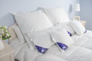 80x80cm 1380gr. 60% Daunen Premium Hotel Qualität Kissen Kopfkissen Dekokissen Schlafkissen Schlaf Kissen Daunenkissen Welt der Träume