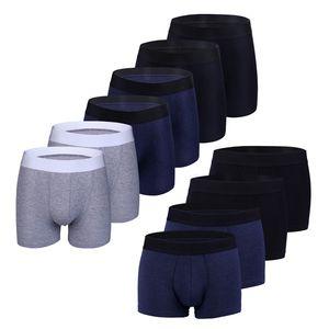 Wolketon 12er Pack Herren Boxershorts weicher Komfort Unterhosen Baumwolle Klassisch Maenner Atmungsaktiv Unterwaesche Groesse: XL